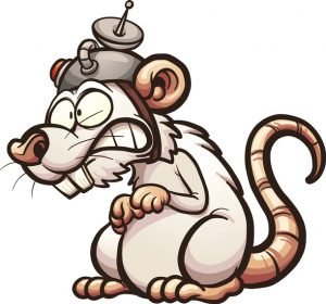 The Lab Rat That Survives Is The One Who Escapes | BullionBuzz