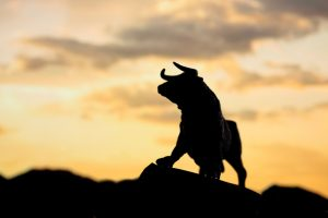 Bull Markets Die on Euphoria | BullionBuzz